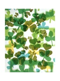 1970s Colorful Background Montage Overlapping Shamrocks Giclee Print