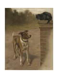 Illustration of a Dog and Cat Giclee Print by William Weekes