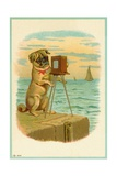Postcard with a Pug and Camera Giclee Print