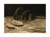 Two Rats Giclee Print by Vincent van Gogh