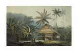 View in the Island of Crakatoa Giclee Print by John Webber