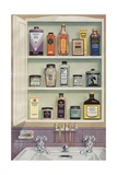 Illustration of Medicine Cabinet Filled with Watkins Products Giclee Print