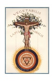 A Rosicrucian Crucifixion Giclee Print by J. Augustus Knapp