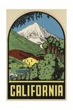 California Travel Decal Giclee Print