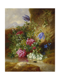 Alpine Flowers Giclee Print by Josef Schuster