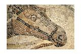 Horse Roman Floor Mosaic Giclee Print
