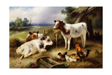 Farmyard Friends Giclee Print by Walter Hunt