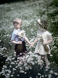1940s-1950s Boy Girl Picking Daisies in Field of Flowers Fotografiskt tryck