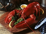Cooked Lobster on Wooden Platter with Lemon Wedge and Drawn Butter Photographic Print