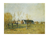 The Trou D'Enfer Farm, Autumn Morning Giclee Print by Alfred Sisley