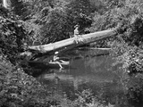 1940s-1950s Two Boys Wearing Hats Fishing in a Stream Reproduction photographique