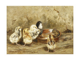 The Uninvited Lunch Guest Giclee Print by Robert Morley