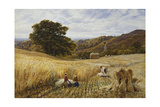 Harvest Time Near Holmbury Hill, Surrey Giclee Print by George Vicat Cole