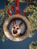 1960s-1970s Picture German Shepherd Dog on Christmas Tree Ornament Photographic Print