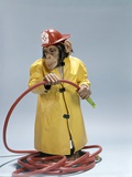 1960s Funny Chimpanzee in Fireman Raincoat and Safety Helmet Holding Red Hose Photographic Print