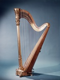 Golden Free Standing Harp Photographic Print