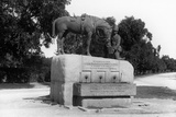 Monument to Horses That Died in the Boer War Photographic Print