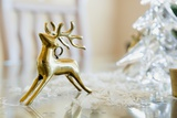 Deer Ornament Photographic Print