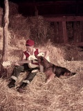 1950s Boy Playing Guitar Collie Dog Sitting Hay Bales Inside Barn Photographic Print