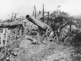 Offensive on the Somme, Abandoned German 150 Guns Photographic Print