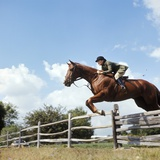 1970s Woman Equestrian Rider Jumping over Split Rail Fence During Steeplechase Horse Race Photographic Print