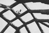 Nigerian Man Building Mud Roof House Photographic Print