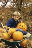 1980s Boy Setting in Wheel Barrow with Halloween Pumpkins Looking at Camera Photographic Print