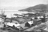 Lyttleton Harbour Photographic Print