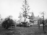 Equestrian Jumping in Belgium, Ca. 1900 Photographic Print