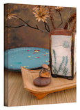 Zen Still Life 2 Gallery-Wrapped Canvas Gallery Wrapped Canvas by Elena Ray