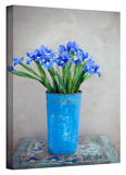 Iris Flowers Gallery-Wrapped Canvas Stretched Canvas Print by Elena Ray