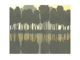 Lake at Dawn II Posters by Norman Wyatt Jr.