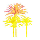 Sunny Palm II Premium Giclee Print by Ricki Mountain