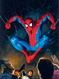 The Amazing Spider-Man No.518 Cover: Spider-Man Prints by Mike Deodato