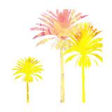 Sunny Palm I Giclée-Premiumdruck von Ricki Mountain