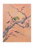 Asian Bird Illustration I Poster by Judy Mastrangelo