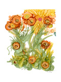 Sunlit Poppies III Posters by Cheryl Baynes