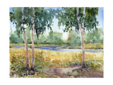 Luminous Meadow I Prints by Tim O'toole