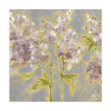 Ethereal Flowers I Prints by Jennifer Goldberger