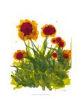 Poppy Whimsy V Poster di Cheryl Baynes