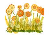 Sunlit Poppies II Posters av Cheryl Baynes