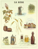 La Biere Collectable Print by  Deyrolle