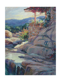Chico's Overlook Giclee Print by Julie G. Pollard