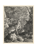 Woodland Deer VII Prints by  Ridinger