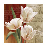 French Tulip Collage II Prints by Abby White