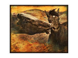 Kissing Horses I Photographic Print by David Drost