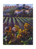 View of Tuscany Premium Giclee Print by Clif Hadfield