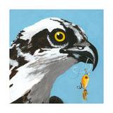 You Silly Bird - Senior Prints by Dlynn Roll