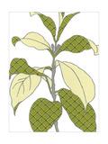 Modern Foliage I Prints by Erica J. Vess