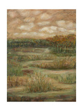 Autumn Sky I Print by Beverly Crawford